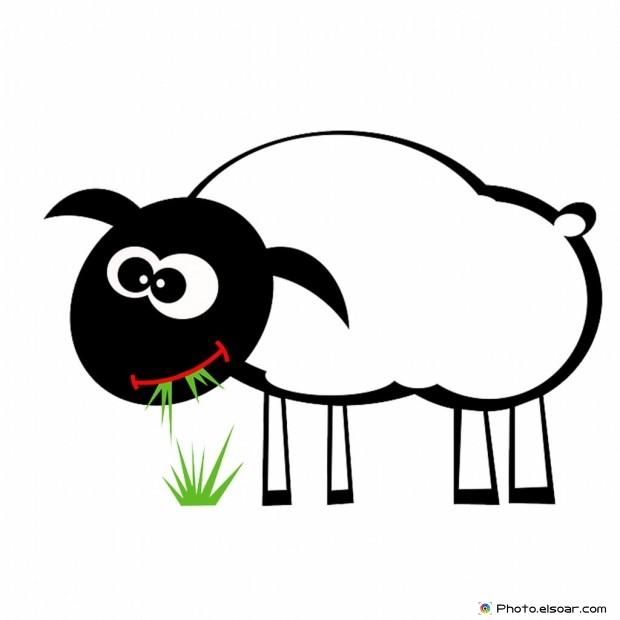 Funny Bakra Eid Mubarak Cartoon Pic