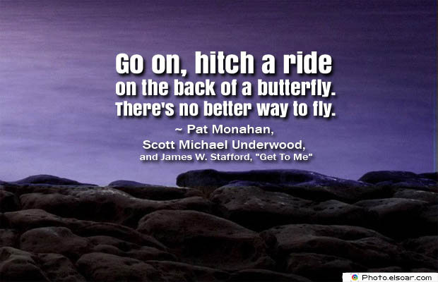 Butterflies Quotes , Go on, hitch a ride on the back
