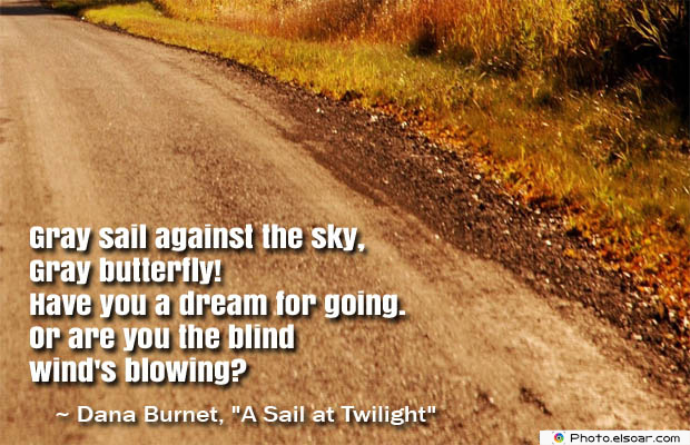 Butterflies Quotes , Gray sail against the sky
