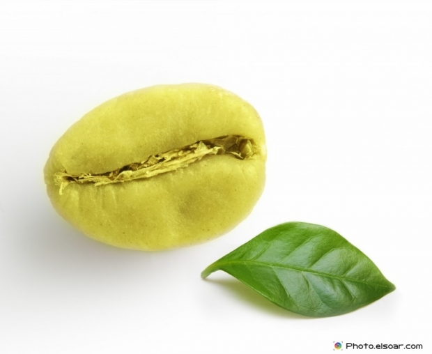 Green coffee bean with small leaf