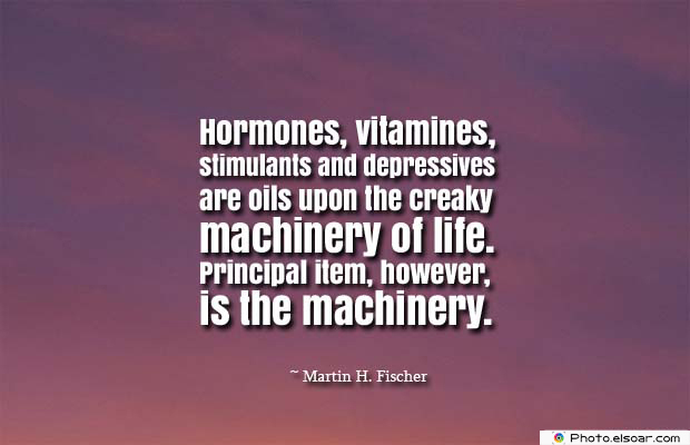 Body Quotes , Quotes About Body , Hormones, vitamines, stimulants and