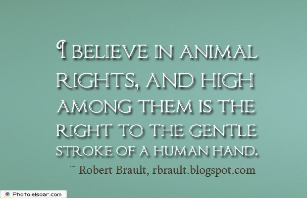 I believe in animal rights, and high among