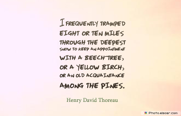 Short Strong Quotes , I frequently tramped eight or ten