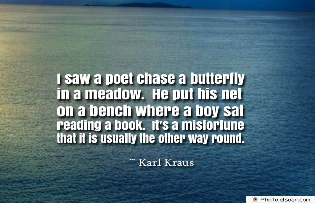 Butterflies Quotes , I saw a poet chase a butterfly in a meadow