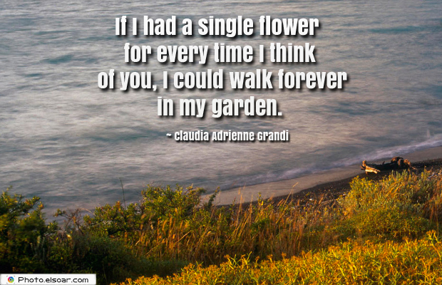 Short Quotes , If I had a single flower for every time I think