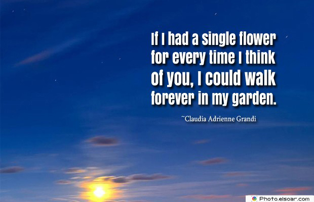 Short Quotes , If I had a single flower for every time