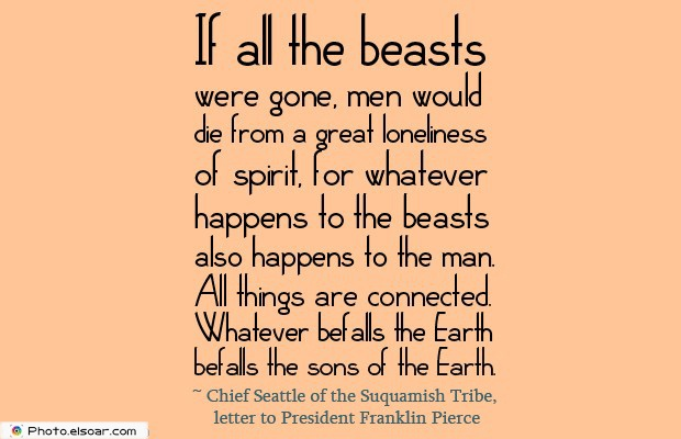 If all the beasts were gone