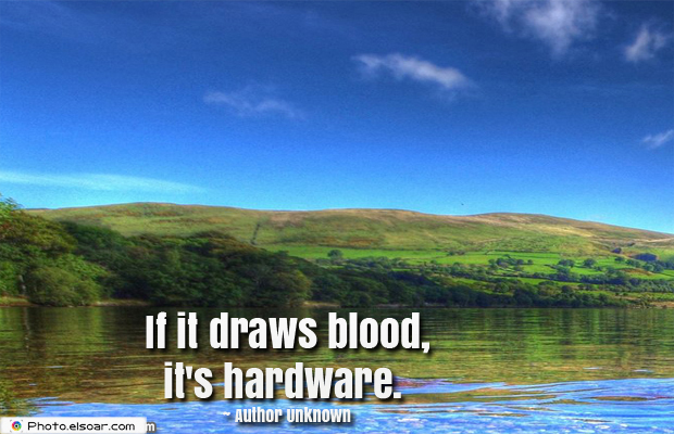 System Administrator , If it draws blood, it's hardware