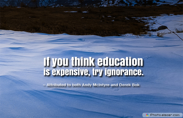 Back to School Quotes , If you think education is expensive