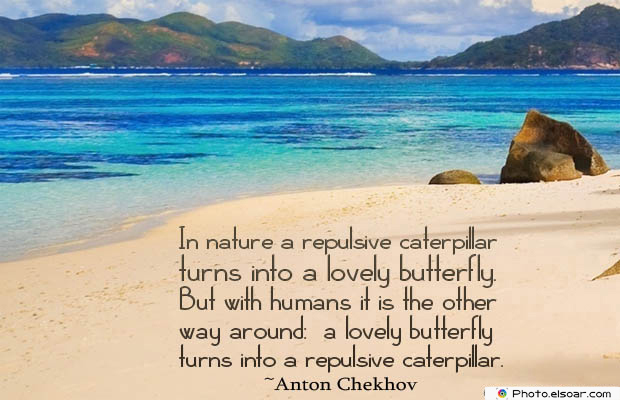 Butterflies Quotes , In nature a repulsive caterpillar turns into
