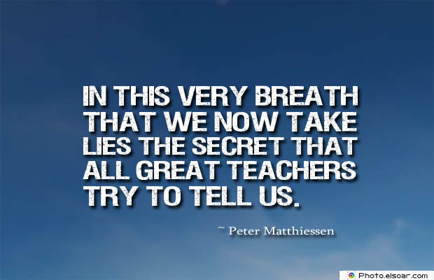 Breathing Quotes , In this very breath that we now