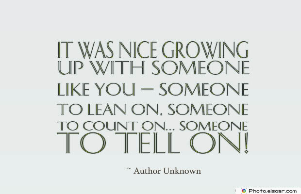 Quotes About Brothers , It was nice growing up with someone