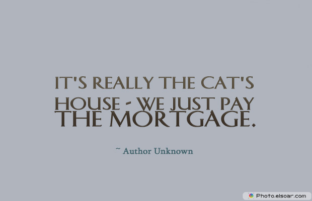 Housewarming Quotes , It's really the cat's house</strong> - <em>we just pay the mortgage