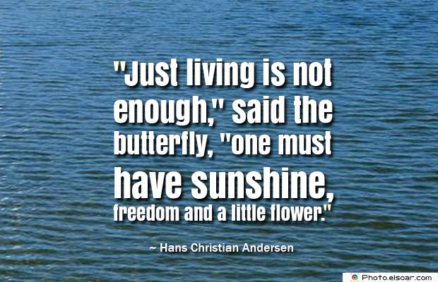 Butterflies Quotes , Just living is not enough