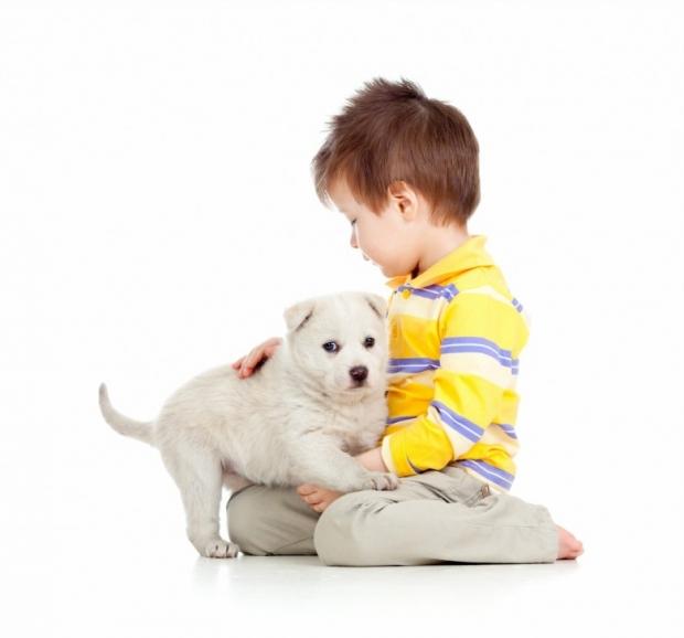 Kid hugging puppy