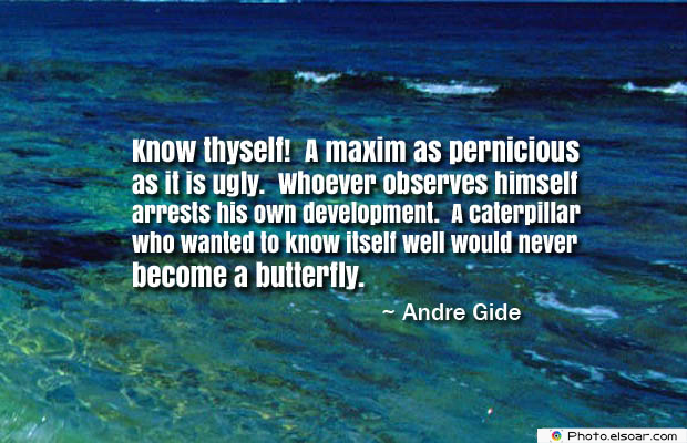 Butterflies Quotes , Know thyself! A maxim as pernicious