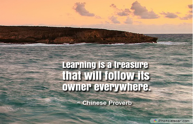 Back to School Quotes , Learning is a treasure that will follow its