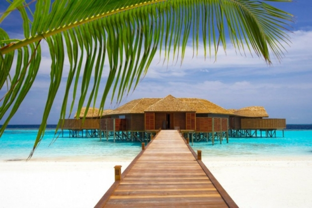 Lily Beach Resort & Spa, Maldives 7