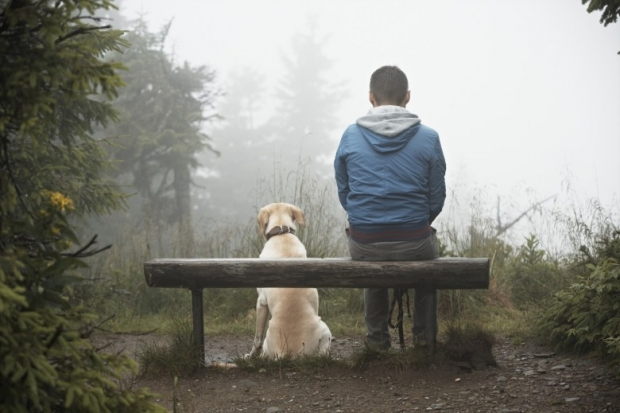 Lost man with his dog in mountain