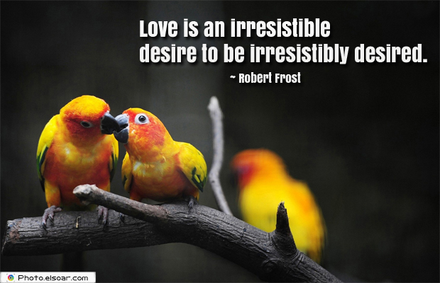 Love is an irresistible desire to be irresistibly