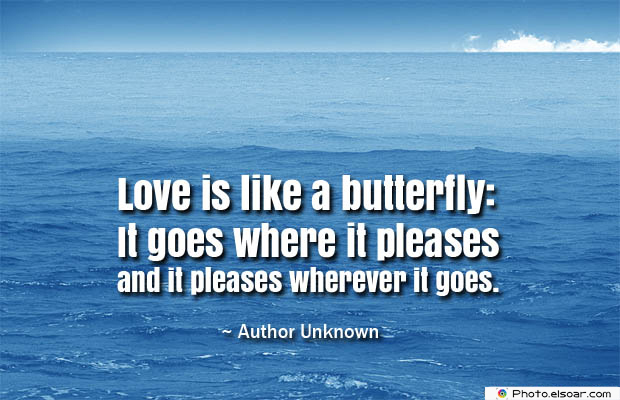 Butterflies Quotes , Love is like a butterfly