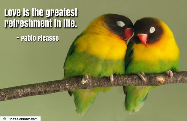 Love is the greatest refreshment