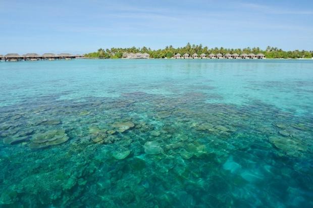 Luxury Resort Ayada Maldives 3