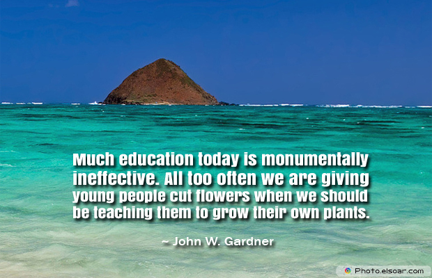 Back to School Quotes , Much education today is monumentally
