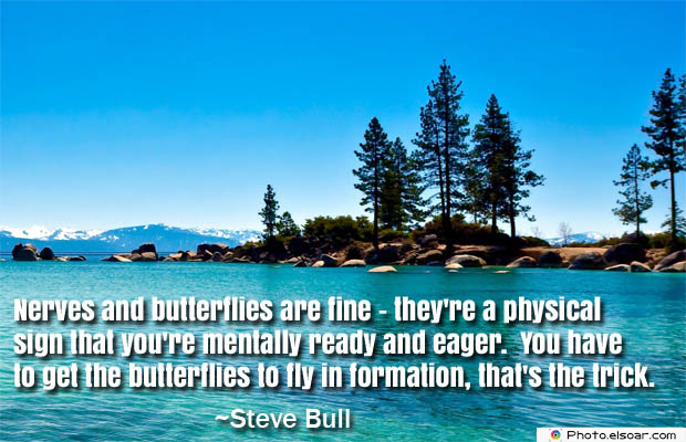 Butterflies Quotes , Nerves and butterflies