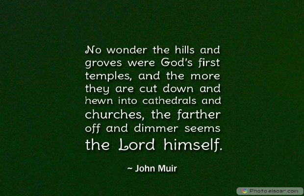 Short Strong Quotes , No wonder the hills and groves were God's