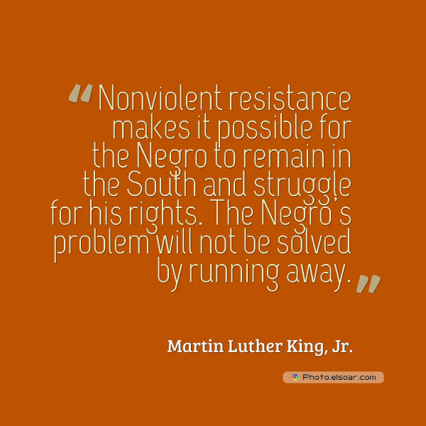 Martin Luther King Jr. Day , Nonviolent resistance makes it possible for the Negro to remain in the South