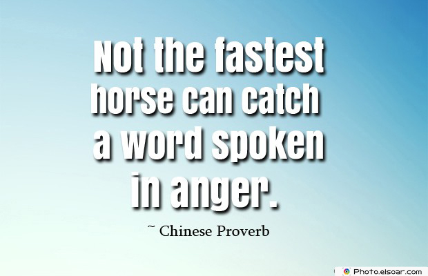 Short Strong Quotes , Not the fastest horse can catch a word