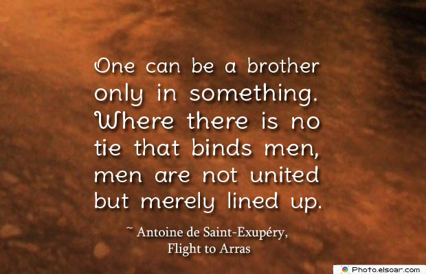 Quotes About Brothers , One can be a brother only