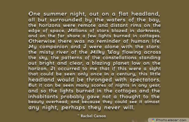 Beauty Quotes , One summer night, out on a flat headland
