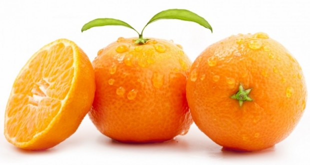 Oranges ,Orange Slices Photo 11