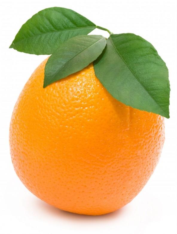 Oranges ,Orange Slices Photo 7