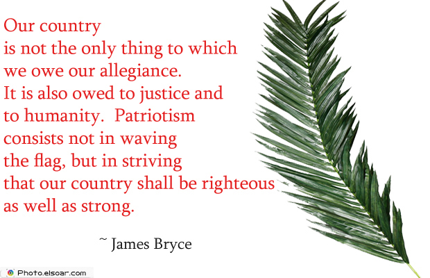 Short Quotes , Our country is not the only thing to which we owe our allegiance