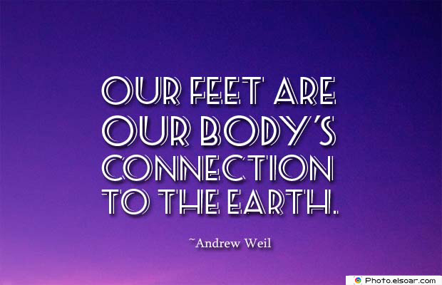 Body Quotes , Quotes About Body , Our feet are our body's