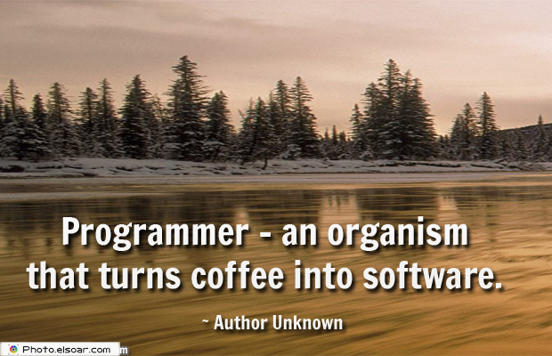 System Administrator , Programmer</strong> - <em>an organism that turns