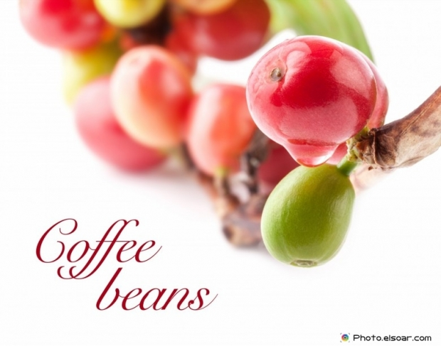 Red, Green coffee beans on white