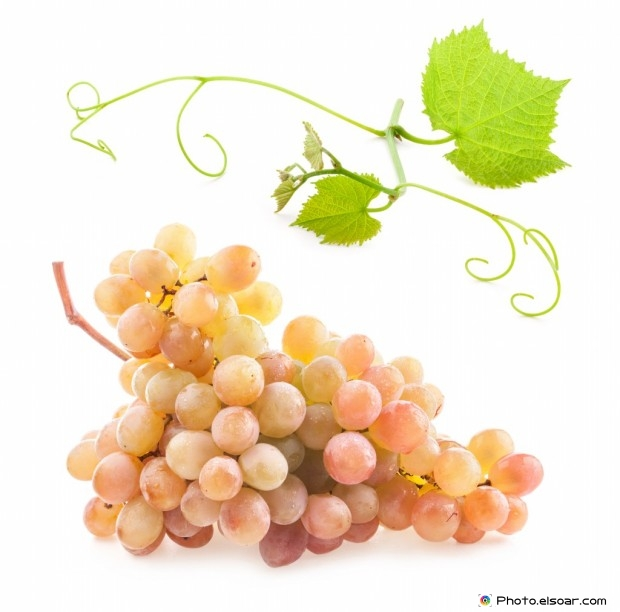 Ripe Grape With Leaves And Water Drops