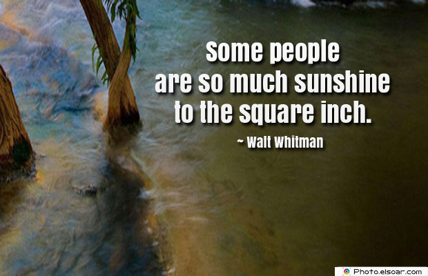 Quotations , Sayings , Some people are so much sunshine
