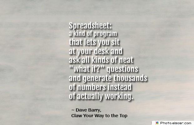 Spreadsheet a kind of program