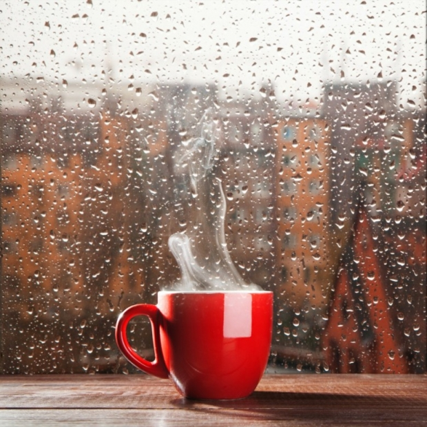 Steaming coffee cup on a rainy day