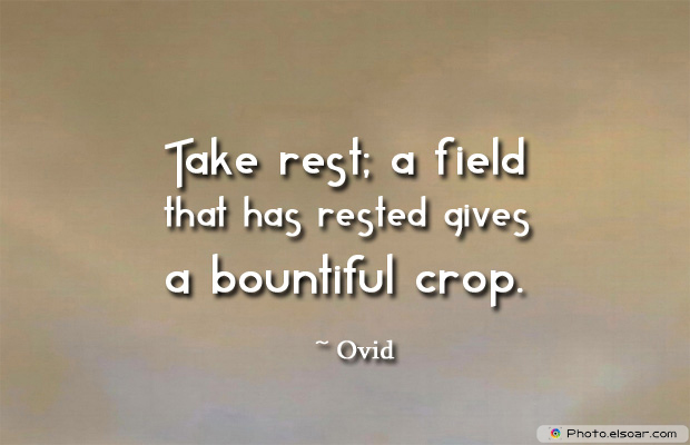 Take rest a field that has rested
