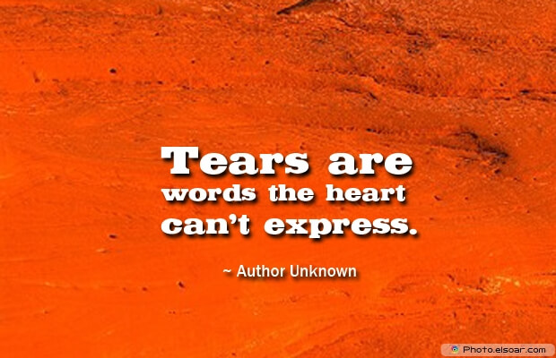 Tears are words the heart