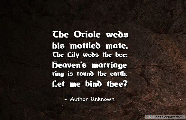 Engagement Quotes , The Oriole weds his mottled mate