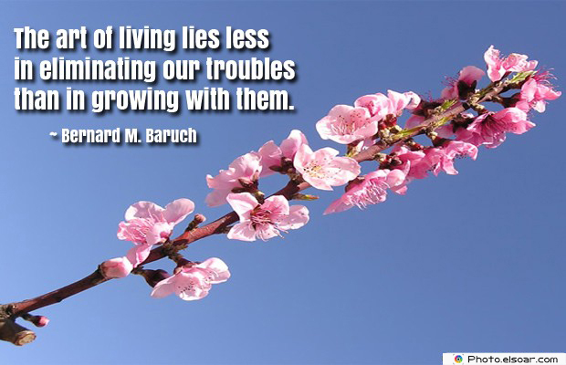 The art of living lies less in eliminating our troubles than