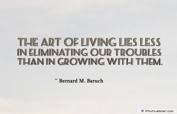 The art of living lies less in eliminating