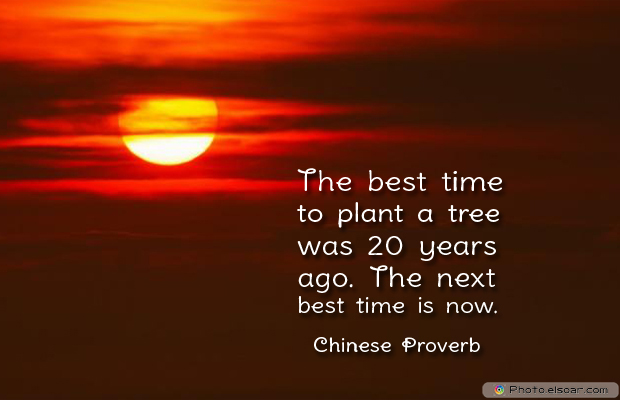 Short Strong Quotes , The best time to plant